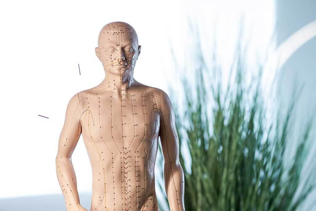 Akupunktur Punkte - Naturheilpraxis Anja Borger - Heilpraktiker/Heilpraktikerin für Ingolstadt, Neuburg, Eichstätt